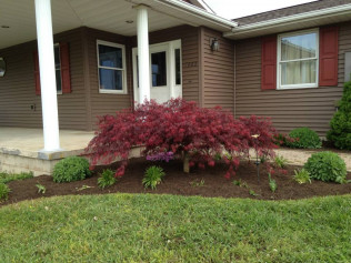 Pruning, Edging, and Mulching